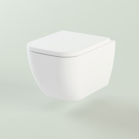 One wall-hung toilet