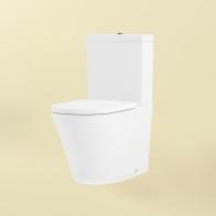 Biore Rimless squat toilet