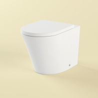 Biore wall-standing toilet