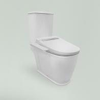 Smart F-Control squat toilet