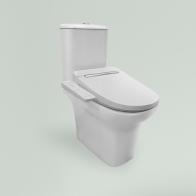 Smart N-Flash squat toilet