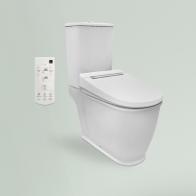 Smart F-Control Multi squat toilet