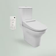 Smart N-Flash Multi squat toilet