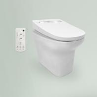 Smart N-Flash Multi wall-standing toilet