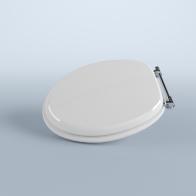 Art toilet seat